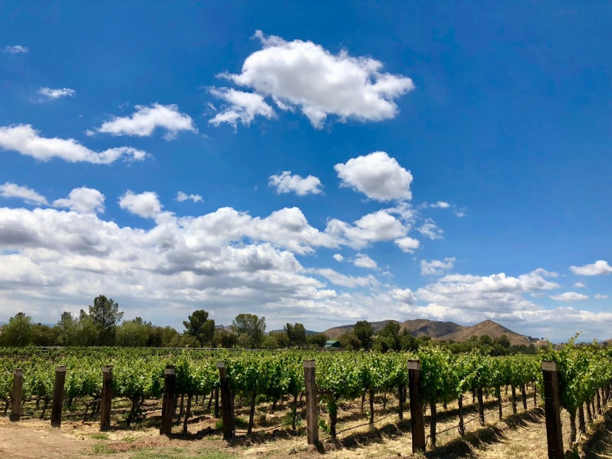 California Day Trips: Exploring AguaDulce