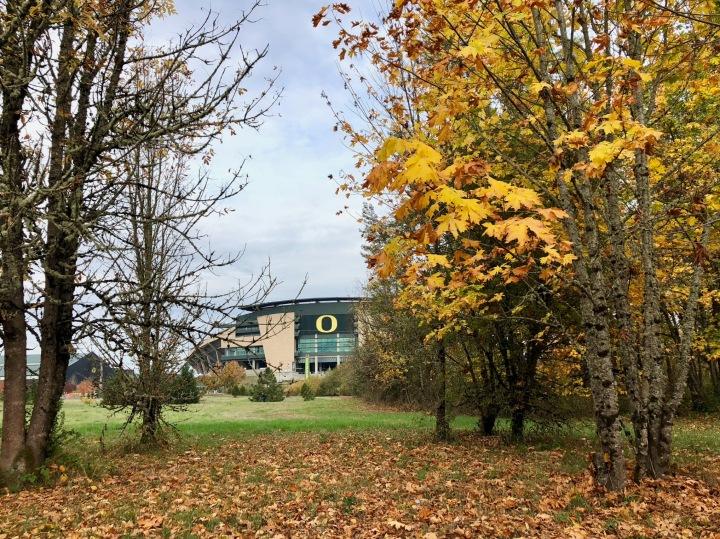 Ducks, Hops, and Tie Dye: Eugene, Oregon TravelGuide
